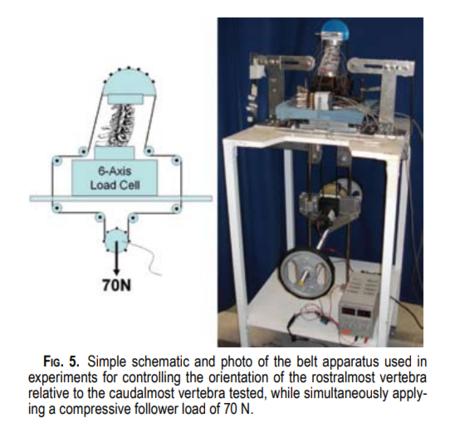 Crawford, et al.  Biomechanics of a posture-controlling cervical artificial disc: mechanical, in vitro, and finite-element analysis.  Neruosurg Focus 28 (6): E11, 2010.